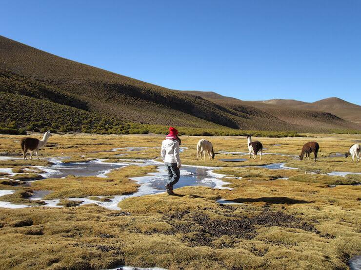 Salar do Uyuni Bolivia