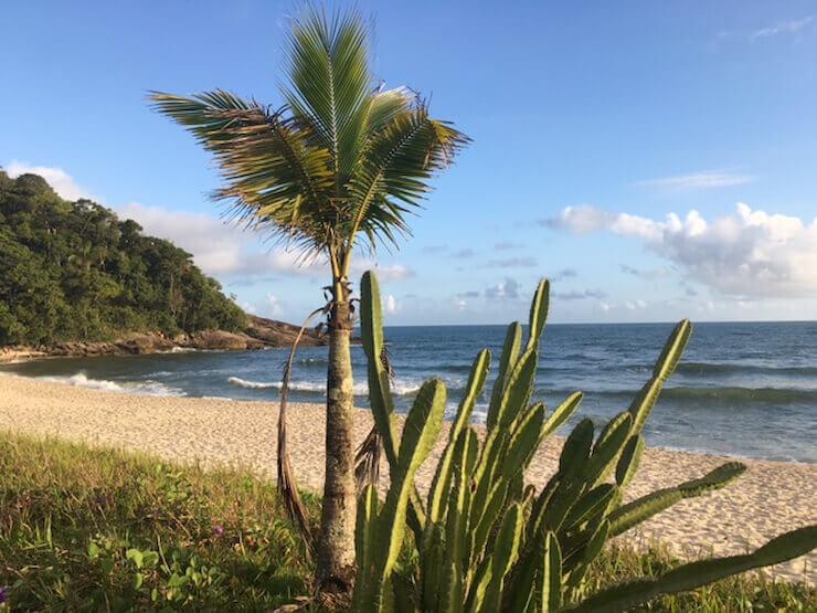 Praia de Juréia São Sebastião