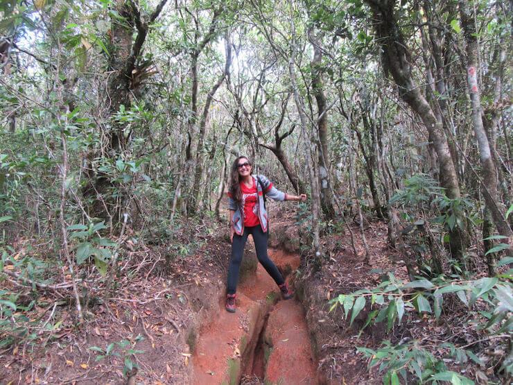 Dicas de trilhas Pico do Itaguaré