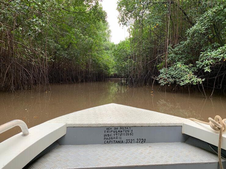 Delta Piauí